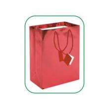 Art. PG004 - Shopper in carta laminata lucida colori vari